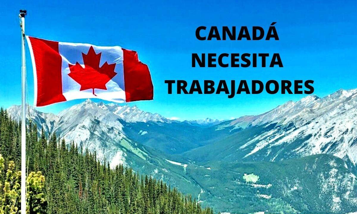 🧿 Canadá Empleos para Extranjeros Trabajos agricolas y profesiones 2020